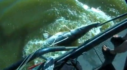 PSE Adventure Bowhunting Gets a Trophy Gar with Extreme Bowfishing
