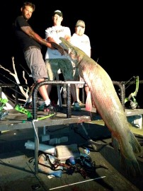 Awesome Trophy Gar